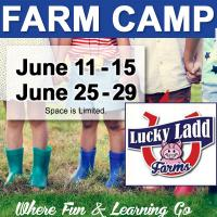 Lucky Ladd Farms Summer Camp