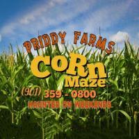 Fall at Priddy Farms
