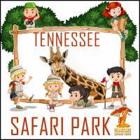 Tennessee Safari Park Walk and Drive Zoo